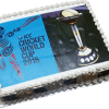 Word Cup Cricket Cake