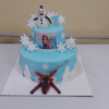 Designer Frozen  Cake