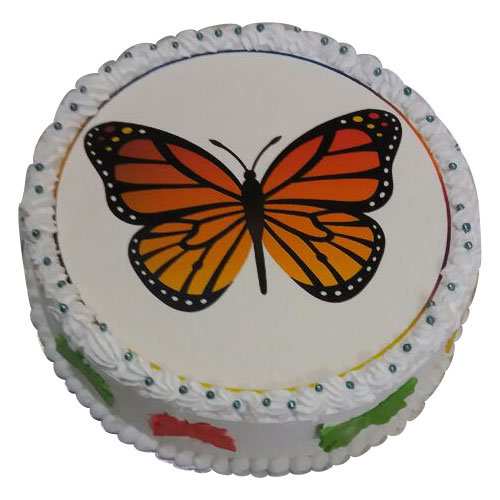 Butterfly Cakes Design 100 Eggless Free Shipping Within 2 3hrs
