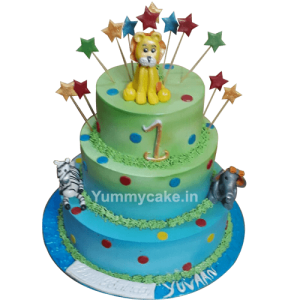 5 kg Cake for First Birthday