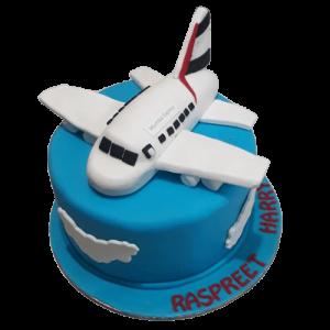 Plane Shaped Birthday Cake