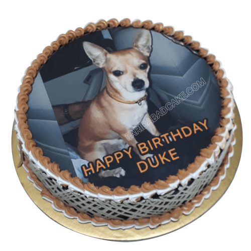 Admirable Dog Birthday Cake Online Free Delivery Within 2 Hours Personalised Birthday Cards Veneteletsinfo
